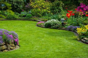 lawn care fuquay varina