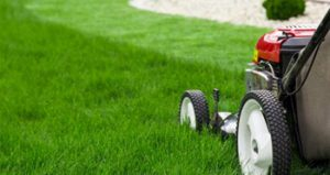 lawn mower landscaping a grass lawn