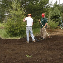 fuquay varina north carolina mulching