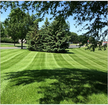 holly springs lawn maintenance