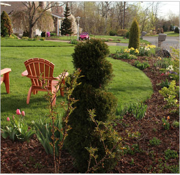 front lawn with mulch and flowerbeds
